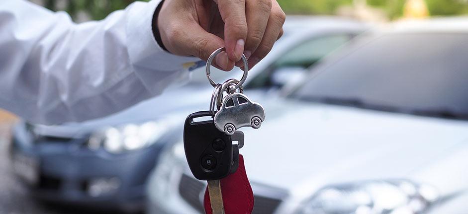 rent-a-car_colaboradores_grow-up-services